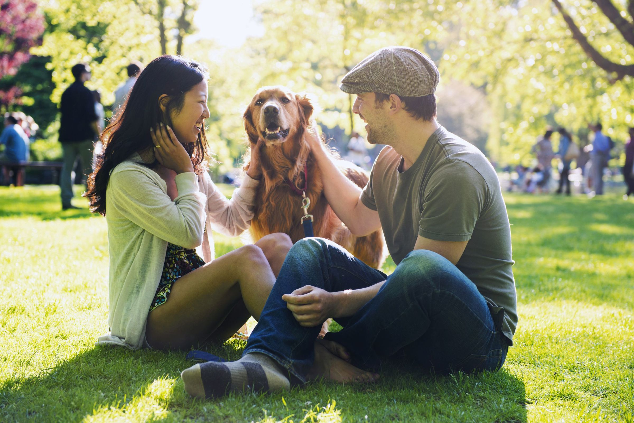 man and woman petting a dog